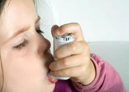 Rischio asma ridotto se il neonato dorme con un animale