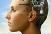 """Cervello: scoperto """"interruttore"""" per migliorare la memoria"""