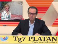 Tg 7 Platani 4 edizione
