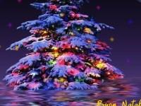 Perchè a Natale si addobba l'albero? Le prime vacanze e lo scambio dei regali