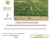 MUSSOMELI – Convegno sulla biodiversità del grano